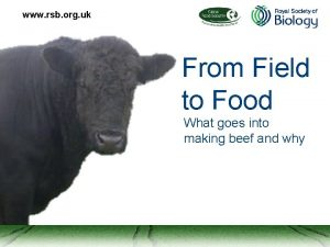 www rsb org uk From Field to Food
