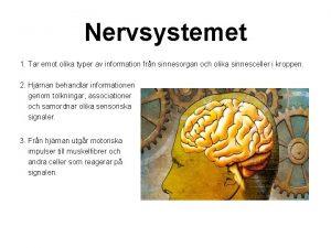 Nervsystemet 1 Tar emot olika typer av information