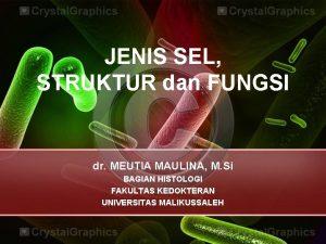 JENIS SEL STRUKTUR dan FUNGSI dr MEUTIA MAULINA