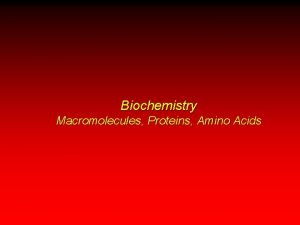 Biochemistry Macromolecules Proteins Amino Acids Introduction to Biochemistry