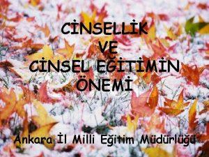 CNSELLK VE CNSEL ETMN NEM Ankara l Milli