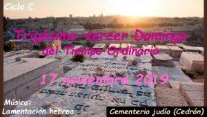 Ciclo C Trigsimotercer Domingo del Tiempo Ordinario 17