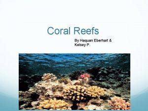 Coral Reefs By Haquan Eberhart Kelsey P Table