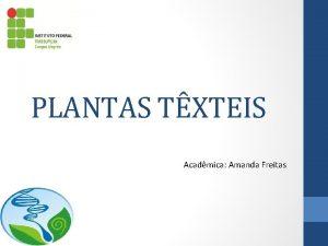 PLANTAS TXTEIS Acadmica Amanda Freitas Plantas Txteis So