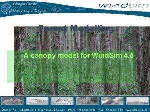 Giorgio Crasto University of Cagliari ITALY Forest Modelling