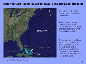 Exploring Coral Reefs a Virtual Dive in the