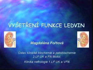 VYETEN FUNKCE LEDVIN Magdalna Fotov stav klinick biochemie
