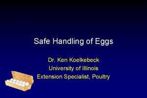 Safe Handling of Eggs Dr Ken Koelkebeck University