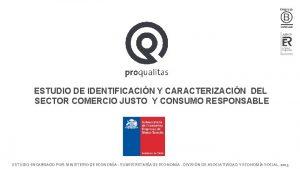 ESTUDIO DE IDENTIFICACIN Y CARACTERIZACIN DEL SECTOR COMERCIO