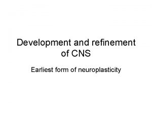 Development and refinement of CNS Earliest form of