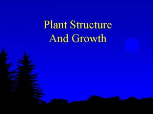 Plant Structure And Growth The Plant Body is