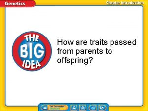 How are traits passed from parents to offspring