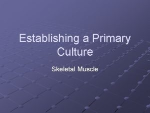 Establishing a Primary Culture Skeletal Muscle Muscle regeneration