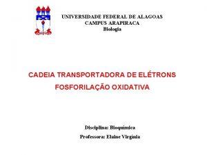 UNIVERSIDADE FEDERAL DE ALAGOAS CAMPUS ARAPIRACA Biologia CADEIA