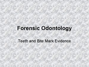 Forensic Odontology Teeth and Bite Mark Evidence What