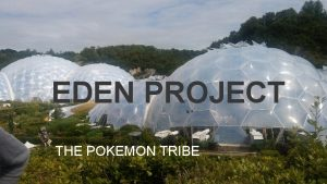 EDEN PROJECT THE POKEMON TRIBE WHAT EDEN PROJECT