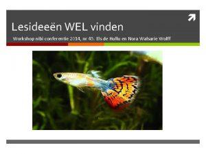 Lesideen WEL vinden Workshop nibi conferentie 2014 nr