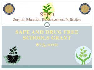 SEED Support Education Encouragement Dedication SAFE AND DRUG
