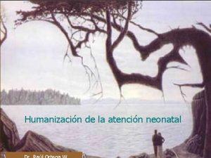 Humanizacin de la atencin neonatal El Recin Nacido