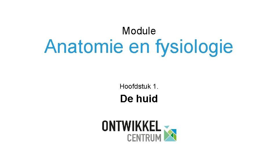 Module Anatomie en fysiologie Hoofdstuk 1 De huid