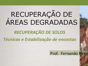 RECUPERAO DE REAS DEGRADADAS RECUPERAO DE SOLOS Tcnicas