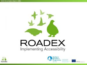 ROADEX Network Implementing Accessibility ROADEX Network Implementing Accessibility