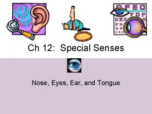 Ch 12 Special Senses Nose Eyes Ear and