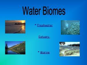 Freshwater Estuary Marine salt Freshwater means it does