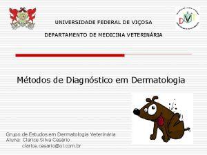 UNIVERSIDADE FEDERAL DE VIOSA DEPARTAMENTO DE MEDICINA VETERINRIA