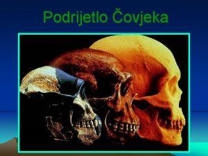 Podrijetlo ovjeka Razvoj ovjeka ovjek je sisavac pripada