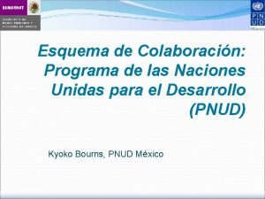 Esquema de Colaboracin Programa de las Naciones Unidas