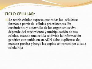 CICLO CELULAR La teora celular expresa que todas