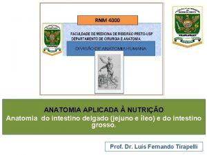 RNM 4000 ANATOMIA APLICADA NUTRIO Anatomia do intestino