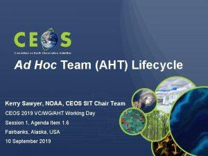 Committee on Earth Observation Satellites Ad Hoc Team