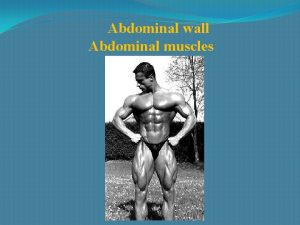 Abdominal wall Abdominal muscles Rectus sheath Inguinal canal