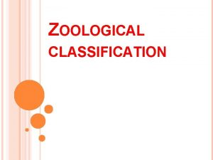 ZOOLOGICAL CLASSIFICATION CLASSIFICATION ITS BASIS Biological Classification is