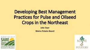 Developing Best Management Practices for Pulse and Oilseed