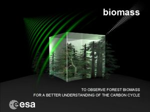 biomass TO OBSERVE FOREST BIOMASS FOR A BETTER