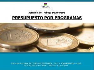 Jornada de Trabajo DSAFPEPS PRESUPUESTO POR PROGRAMAS Presupuesto