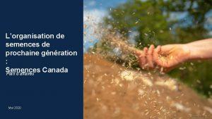Lorganisation de semences de prochaine gnration Semences Canada