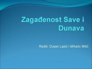 Zagaenost Save i Dunava Radili Dusan Lazi i