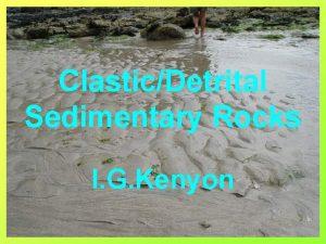 ClasticDetrital Sedimentary Rocks I G Kenyon Characteristics of