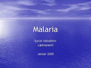 Malaria Eyrn Valsdttir Lknanemi Janar 2005 tbreisla Trpsksubtrpsk