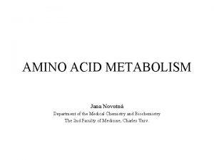 AMINO ACID METABOLISM Jana Novotn Department of the