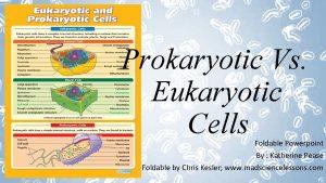 Prokaryotic Vs Eukaryotic Cells Foldable Powerpoint By Katherine