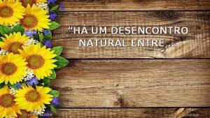 H UM DESENCONTRO NATURAL ENTRE BIAJOVA SLIDES Avano