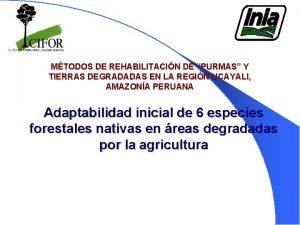 MTODOS DE REHABILITACIN DE PURMAS Y TIERRAS DEGRADADAS