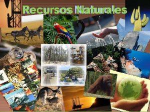 Recursos Naturales Qu son los recursos naturales Los