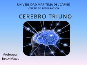 UNIVERSIDAD MARTIMA DEL CARIBE VELERO DE PREPARACIN CEREBRO