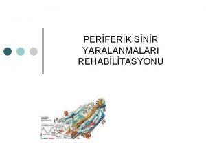 PERFERK SNR YARALANMALARI REHABLTASYONU Kafa iftleri ve spinal